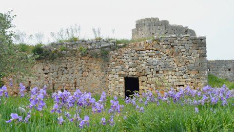 Doğa ve Tarih Peşinde Silifke'ye