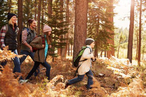California'da Ailece Görülecek Yerler: Yellowstone Milli Parkı